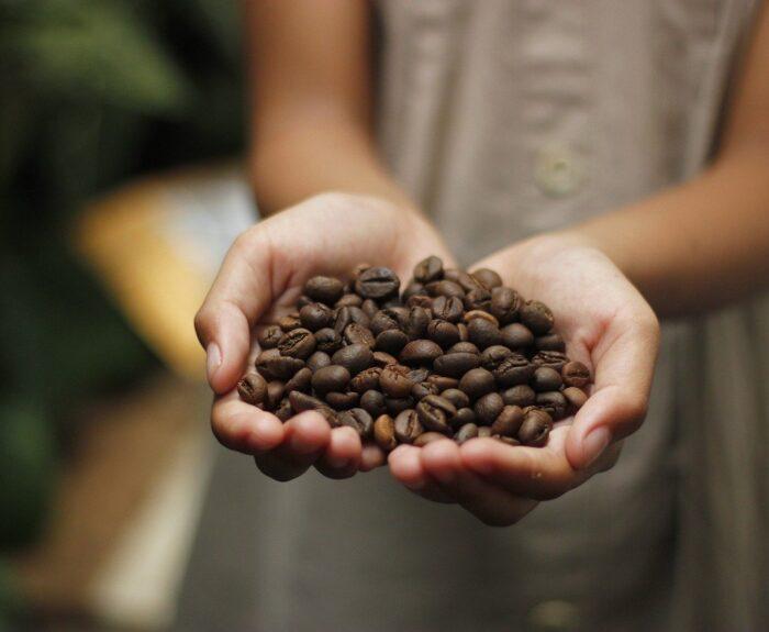 Fairtrade kava Fair Joe